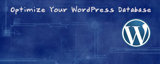 WordPress Database 2 Tips to Clean and Optimize Your WordPress Database